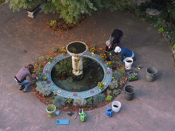 Work Practice, Gardening at the Fountain