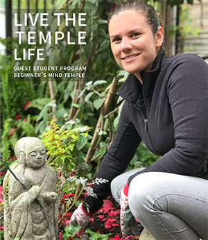 Live the Temple Life. Guest Student Program